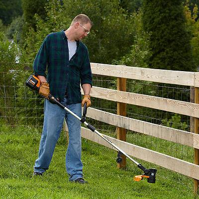 Worx Grass and FREE