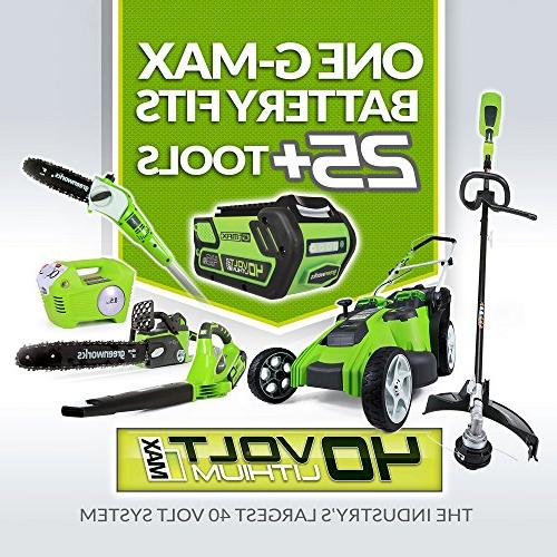 GreenWorks 2101602 Cordless String Trimmer, 2Ah Battery and